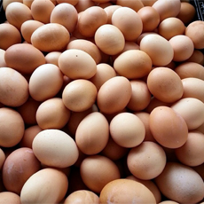 Rosebank Farms - Farm Fresh Eggs